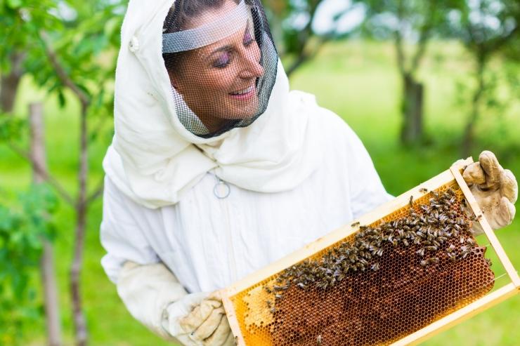 Veterinaar- ja Toiduamet: Eesti mesi vastab nõuetele