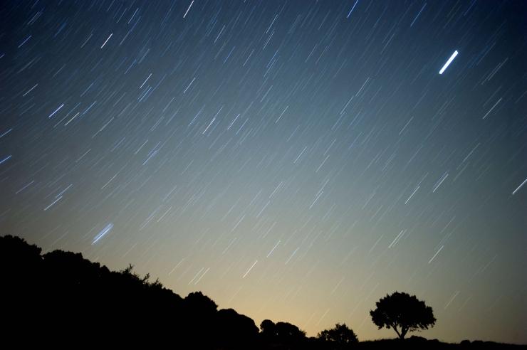 Reedel võib näha langevaid tähti