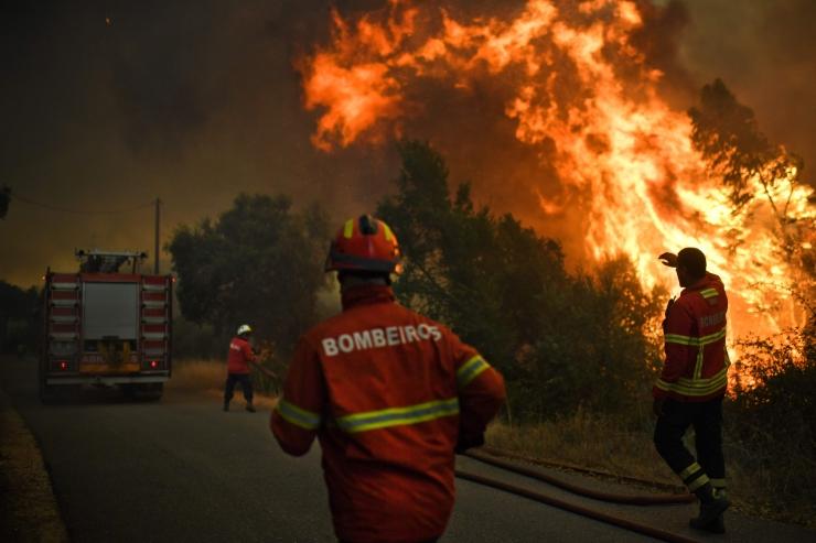 Portugali metsatulekahjud on saadud kontrolli alla