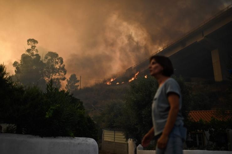 Portugalis registreeriti selle aasta rekordarv põlenguid