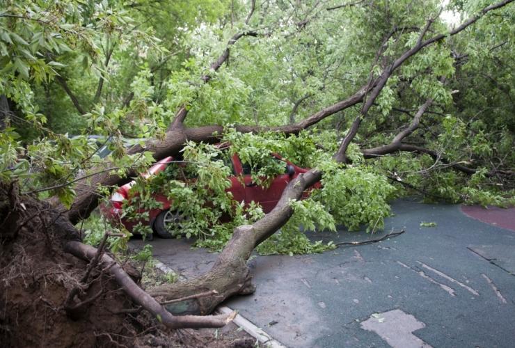 Lätis on 6000 majapidamist tormi järel ikka veel elektrita
