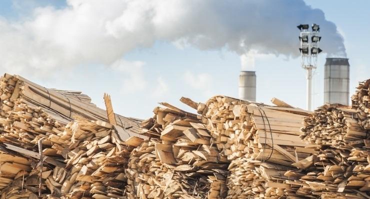 Keskkonnakaitsjad kaebasid tselluloositehase planeeringu kohtusse
