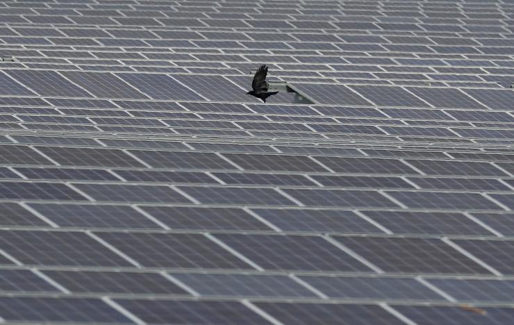 TTÜ tutvustas päikesevalgusest elektrit tootvat teekatendit