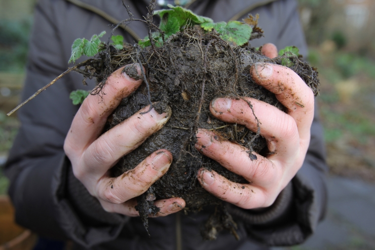 OTSE! Euroopa eksperdid arutavad, kuidas toidutootmisega mulda mitte hävitada