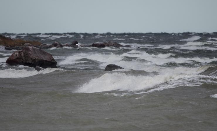 Tugev tuul toob Läänemerele kuni 2,5-meetrised lained