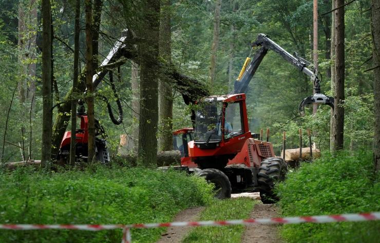 ÖKOLOOG: Keskkonda hävitades röövime oma lastelt võimaluse olla looduses