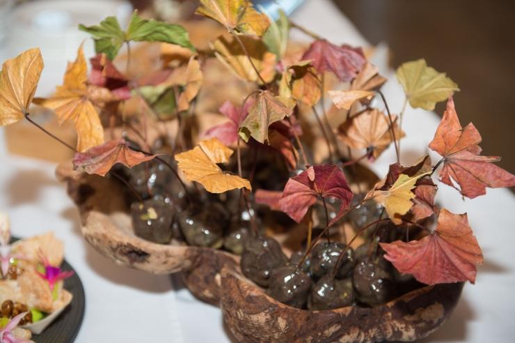 FOTOD JA VIDEO! Restoranide nädal toob loodushoiu kööki