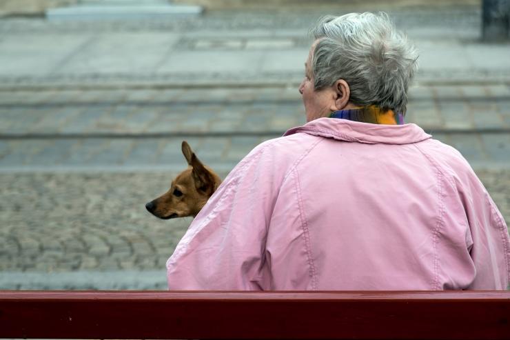 Loomakaitse liit toob üksikutele vanuritele koduloomadega rõõmu