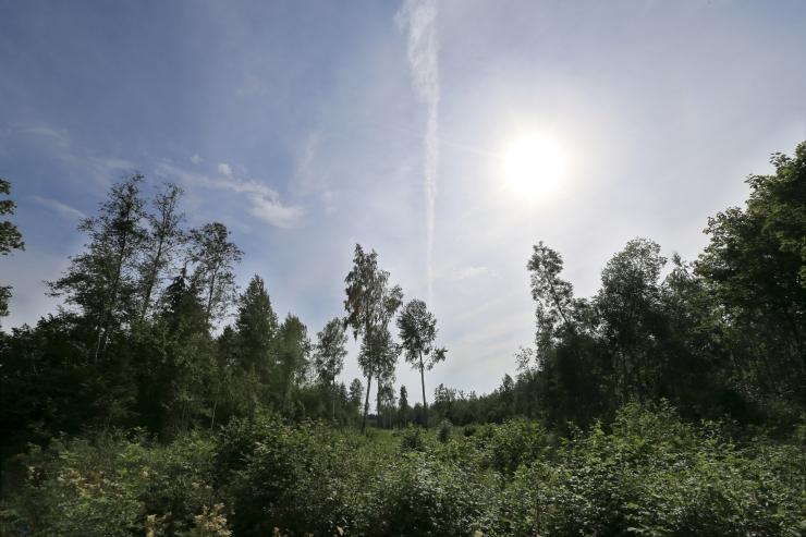 Eesti liitub Euroopa maastikukonventsiooniga