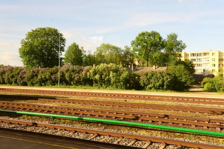 Kultuuriteo tiitli pälvis loomeinimeste pöördumine Rail Balticu vastu