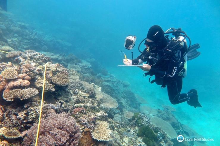 Kliimamuutus ohustab iga neljandat UNESCO maailmapärandi loodusala