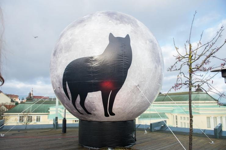 FOTOD! PÖFFi hunt valvab taas pimedaid öid