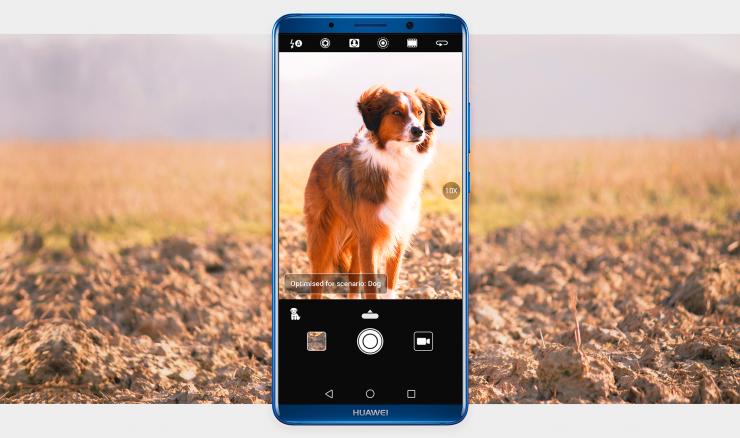 Tehisintellektipõhine fotograafia: telefon tunneb ära koerad, toidud ja isegi lilled