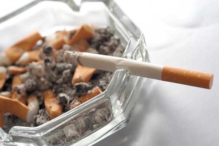 Austria tühistab kavandatud suitsetamiskeelu restoranides