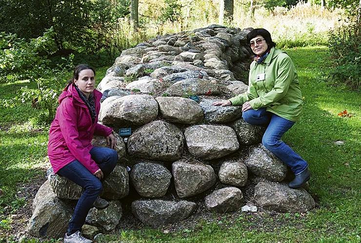 Botaanikaaia alpinaarium saab uued terrassid ja taimed