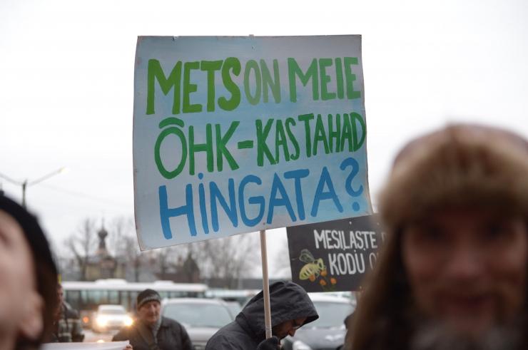 FOTOD! Eesti loodusesõbrad nõuavad Toompeal metsa päästmist