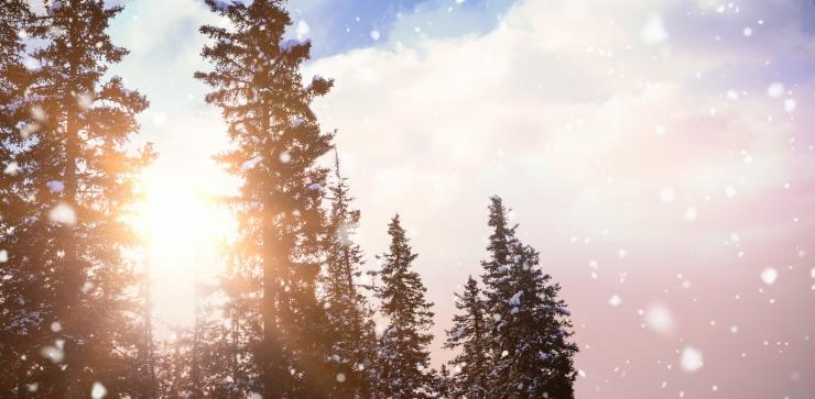 Kolmas advent näitab pisut päikest