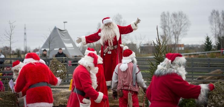 FOTOD JA VIDEO! Pühaderõõm neljajalgsetele: sel aastal külastasid Tallinna Loomaaeda taas jõuluvanad