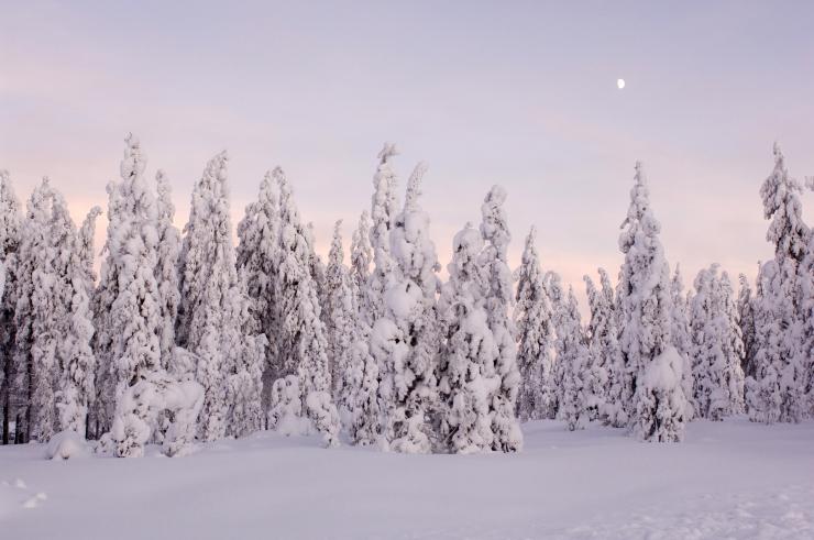Soomes on tuhanded majapidamised paakunud lume tõttu elektrita