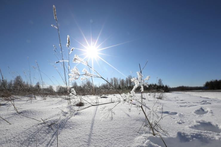 Lähipäevil jätkub talve kohta soe ilm ja oodata on ka päikesepaistet