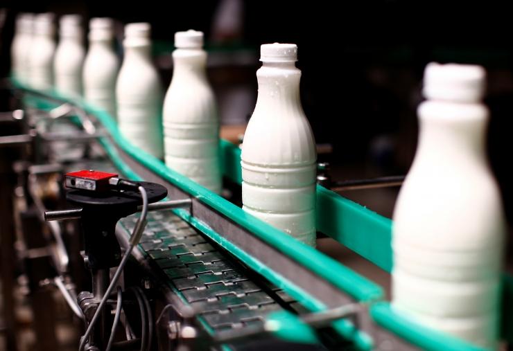 Valio piimaekspert selgitab: miks on täispiima rasvaprotsent kõikuv?