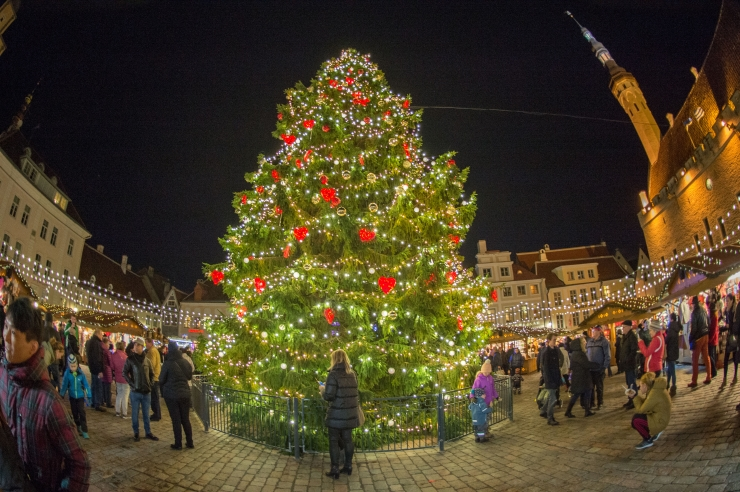 PÜHADERÕÕMU JÄTKUB KAUEMAKS: Jõulukuuseuputuse abil köetakse tallinlastel toad soojaks