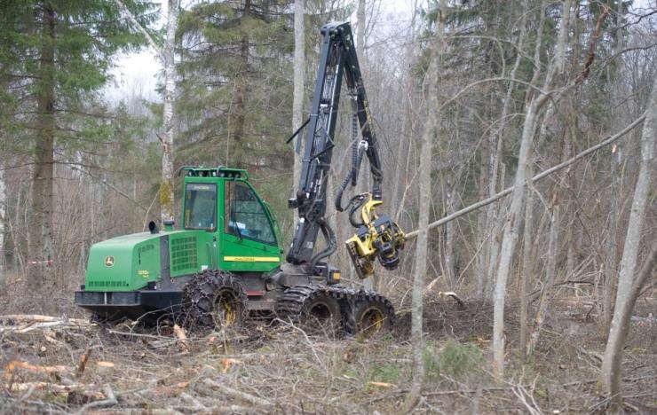 TA looduskaitse komisjon: jätkusuutmatu metsamajandus vajab muutmist
