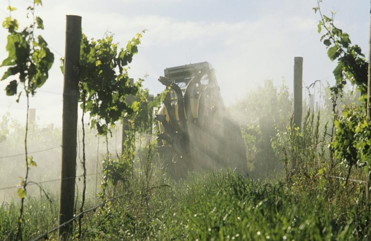 Põllumajandusametil on uued taimekaitse valdkonna e-lahendused