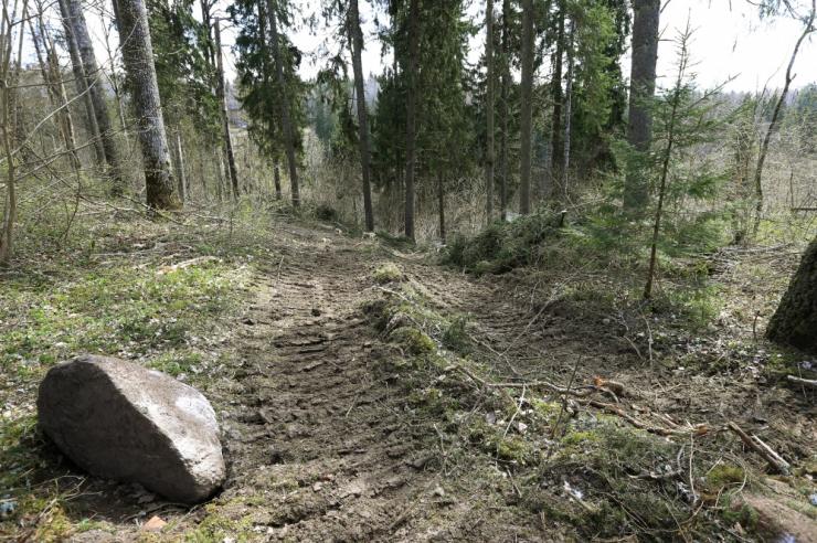 EMA otsib õiguskantslerilt abi metsateatiste menetlemise korra täiustamiseks