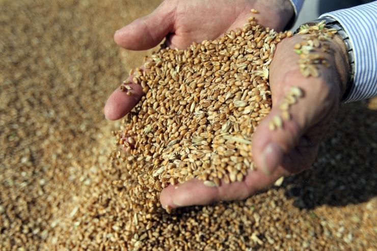 Muudetakse põllumajandusliku tootmispotentsiaali toetuse tingimusi