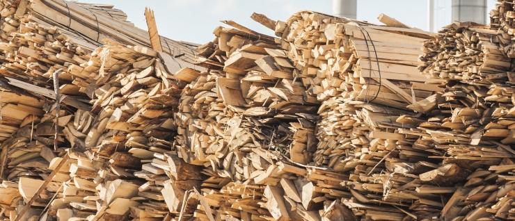 Teadlaste hinnangul on puidutehase kahjulikud mõjud ilmsed