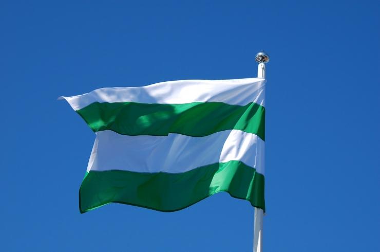 Nõmme tähistab homme vapi ja lipu päeva