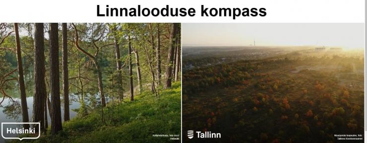 Linnalooduse kompass tutvustab Tallinna ja Helsingi loodust