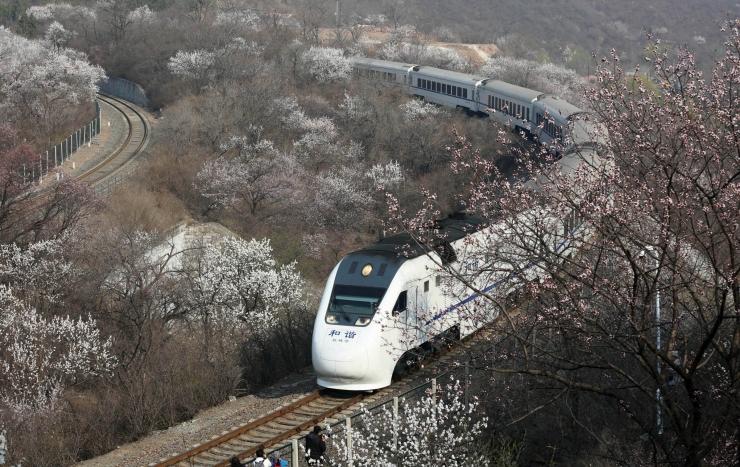 Saksamaal Duisburgis sai metroorongide kokkupõrkes viga üle 20 inimese