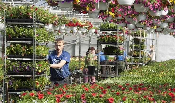 Mess aitab noortel suveks tööd leida