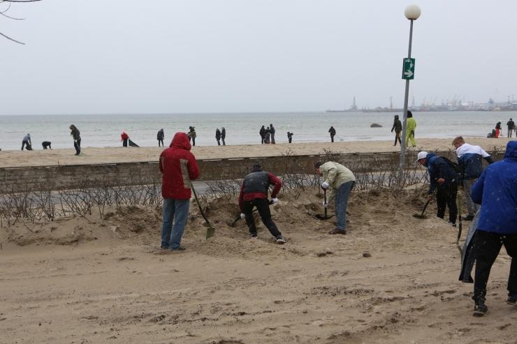 Eesti suuremad talgud toimuvad laupäeval Stroomi rannas