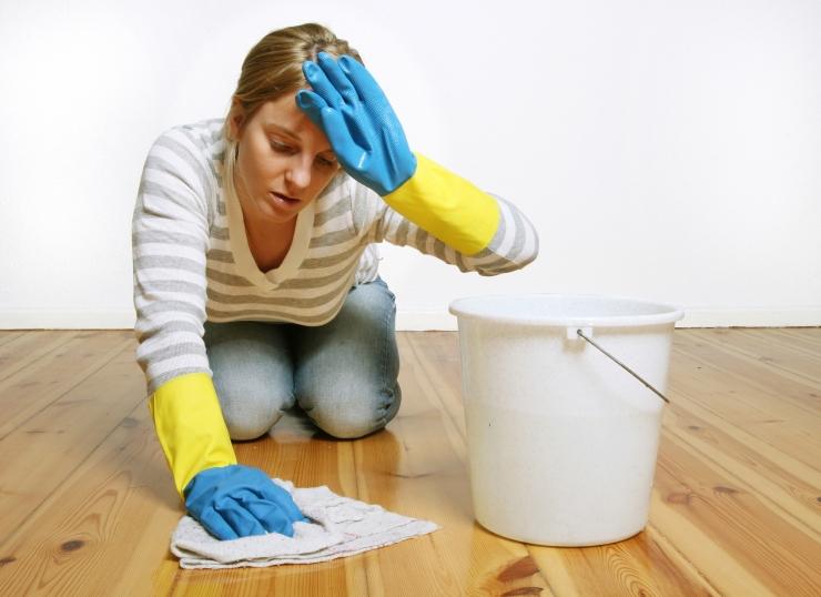 Magdaleenas on tulemas tervisliku koristamise koolitus