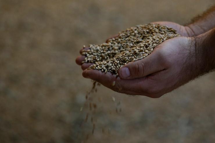 Toiduahela riskihindamist soovitakse muuta läbipaistvamaks