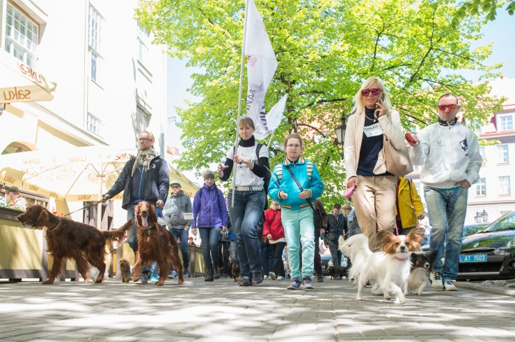 """Eesti Loomakaitse Selts kuulutab välja fotovõistluse """"Lemmikloom linnapildis"""""""