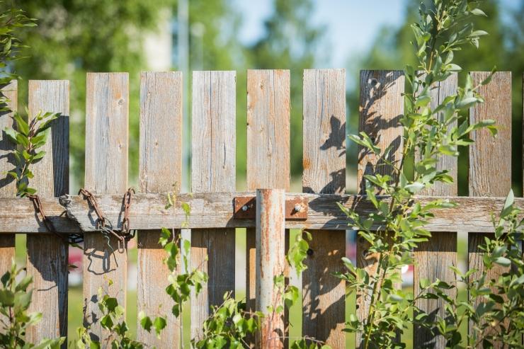 Juuni esimesel nädalavahetusel avavad Eesti aiad külastajatele väravad