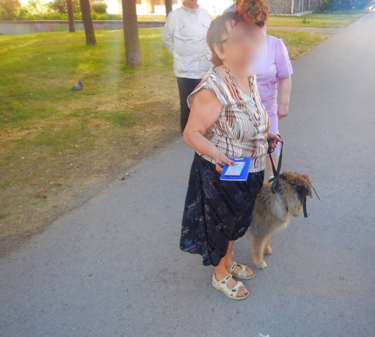 Europassiga koer ründas väikelast