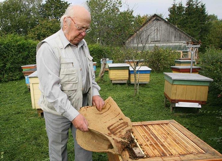Kopsakas toetus hoiab mesilased tervemana