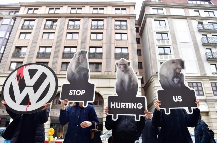 Volkswagen lõpetas protestide tõttu ahvide lämmatamise diislisuitsuga