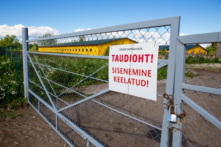 Euroopa Komisjon lõpetas Eestit puudutavad sigade Aafrika katku III tsooni piirangud
