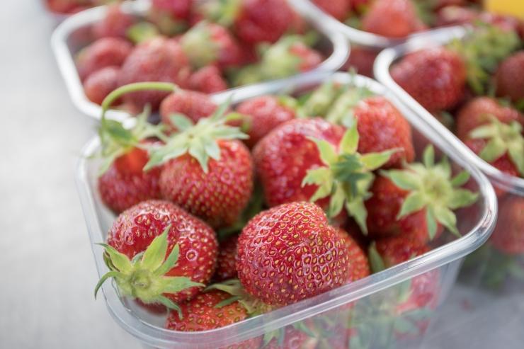 Põllumajandusamet: maasikate müüjal on kohustus tõendada marjade päritolu