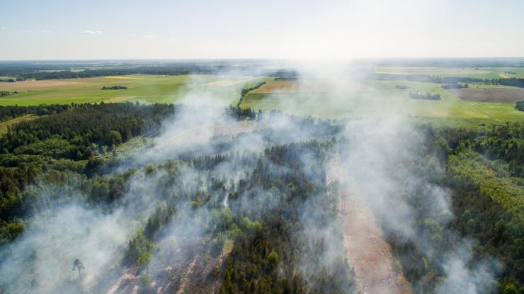 Vikipalu metsapõleng pole laiemaks levinud