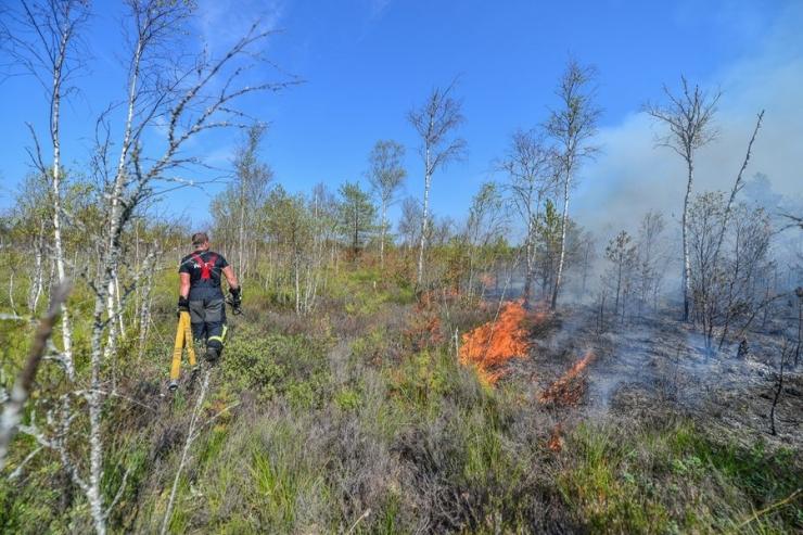Vikipalus jätkub täna metsapõlengu kustutamine