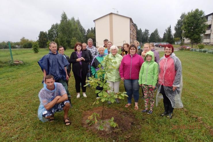VAHVA GALERII! Üle Eesti sirguvad korteriühistute tammed