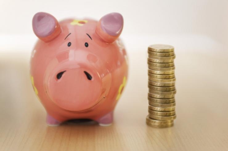 Laenuühistu: ei tasu arvestada üksnes riikliku pensionikindlustusega