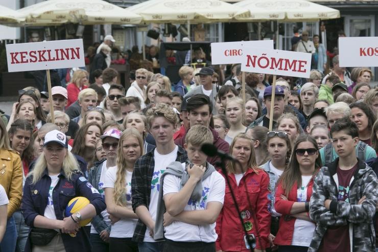 Kristiines taaselustati malevatraditsioon: noored suunatakse heakorratöödele